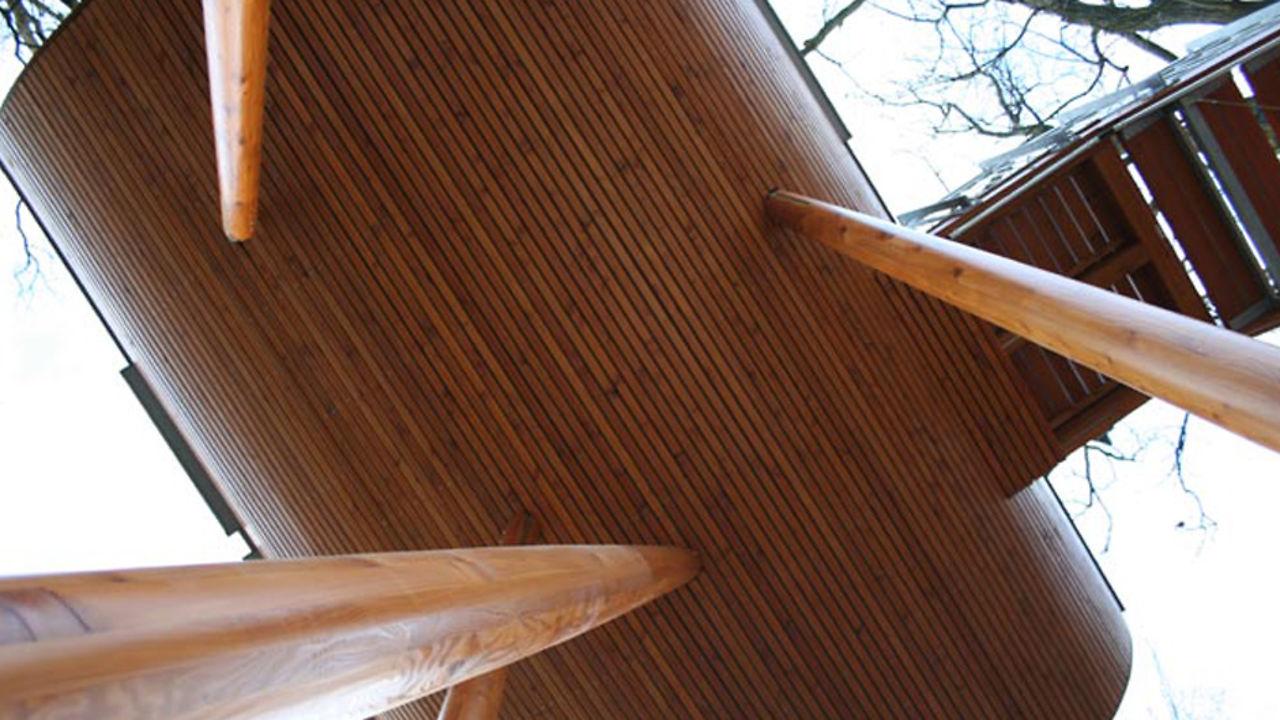 Blick von unten auf Baumhaus